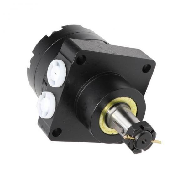 JCB 260 Wheeled Hydraulic Final Drive Motor #2 image